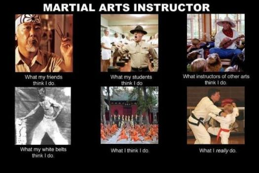 Credit belongs to http://martial-arts-addict.tumblr.com