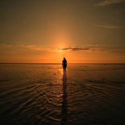 Lost Love Horizon