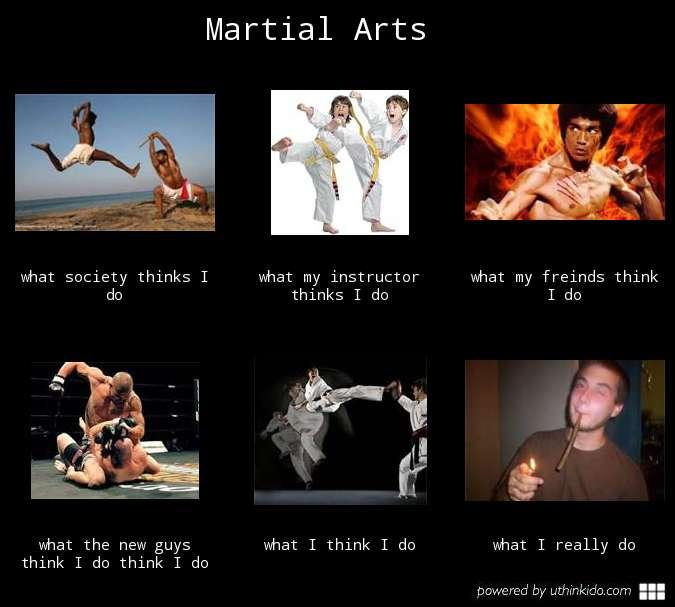 What do martial artists do?