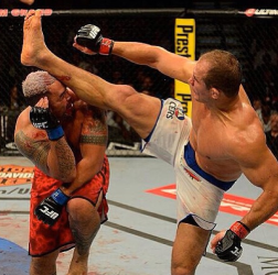 Junior Dos Santos vs. Mark Hunt 2013
